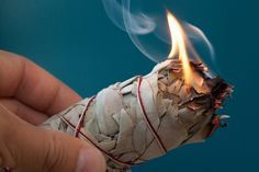 Sage burning is a Native American spiritual tradition that's meant to cleanse. Sage burning, also called smudging, drives negative energies away. Learn more about where to find sage sticks and how to properly burn sage. Benefits Of Burning Sage, Sage Benefits, Spiritual Cleansing, Energy Cleansing, Sacred Plant, Leaf Tv, Moon Wedding, Wicca, Feng Shui