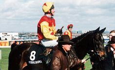 Irish Racing, Grand National, Horse Racing, Race Horses, Goats, Animals, Jumpers, Animales, Animaux