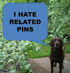 related pins suck