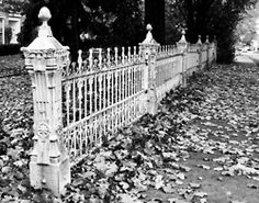 lovely old iron fencing