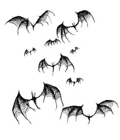 Bats by chrisbonney.deviantart.com on @deviantART