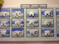 A super Arctic Polar Bears classroom display photo contribution. Great ideas for your classroom! School Displays, Classroom Displays, Class Displays, Winter Art, Winter Theme, Arctic Polar Bears, Arctic Explorers, Artic Animals, Polo Norte