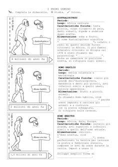 Risultati immagini per australopiteco lucy scuola primaria