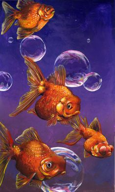 Goldfish and Bubbles by LexxieLizzie on DeviantArt Gold Fish Painting, Acrylic Painting Canvas, Painting & Drawing, Poisson Combatant, Fish Crafts, Fish Art, Tropical Fish, Painting Inspiration, Watercolor Art