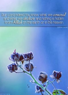 Qur'an surah Ibrahim (Abraham) 14:38: Our Lord, indeed You know what we conceal and what we declare, and nothing is hidden from Allah on the earth or in the heaven.