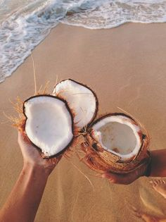 the salty sea + sweet coconuts