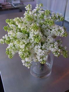 Bridesmaid bouquet.. white lilac