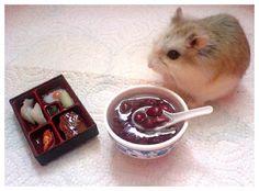 I love this hamster's tiny bento box