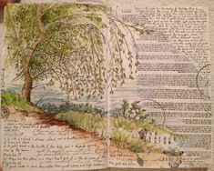 My husband's (Gerard Lange)  nature study journal entry for 30 Sep 2012.