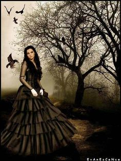 Love Amy Lee