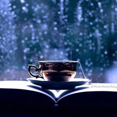Oh the magic of a good book, a cup of tea and a rainy day! #paradisefoundsb #book #rainyday #delicious