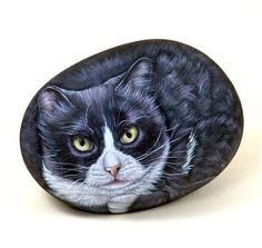 Cats hand painted on stone by Ernestina Gallina-Pietrevive Rock Art-Cat stones Pebble Painting, Pebble Art, Stone Painting, Painted Pavers, Painted Rocks Kids, Rock Painting Ideas Easy, Pet Rocks, Stone Crafts, Leaf Art