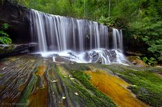 Lower Somersby Falls,   Brisbane Water National Park, Central Coast, NSW, Australia