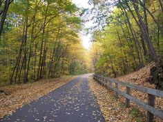 The rail trail in Pepperell, MA walk, stroller friendly, trail the kids behind your bike...