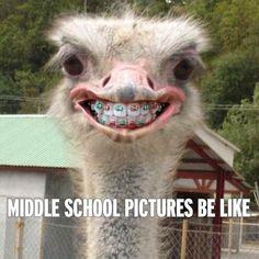 30 School humor Quotes #School #Humor