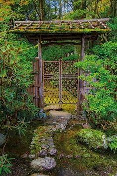 Landscape architect Marc Peter Keane highlights the beauty of a Japanese garden, showcasing garden design ideas a variety of styles. #JapaneseGarden