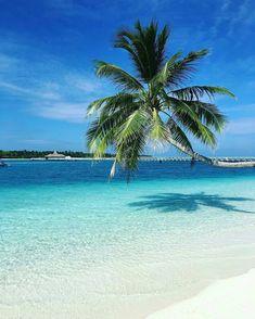 Comrades Rangali Resort #Maldives
