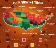 Fall foliage map for the continental U.S.