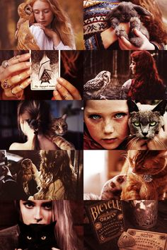 """You see, a witch has to have a familiar, some little animal like a cat or a toad. He helps her somehow. When the witch dies the familiar is suppose to die too, but sometimes it doesn't. Sometimes, if it's absorbed enough magic, it lives on."""