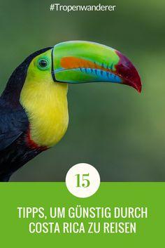 15 Tipps, wie du Costa Rica so günstig wie möglich bereisen kannst. Lies hier bei uns! #CostaRica #PuraVida #Reisen #Tipps #günstig #Tropenwanderer