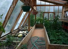 Greenhouses are amazing for their traditional purpose – growing plants and extending the growing season in cold climates, but did you know a greenhouse can also be used to heat your home.