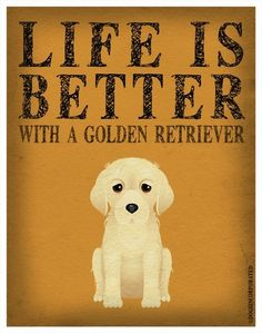 Life is better with a Golden Retriever :-)