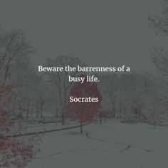 60 Famous quotes and sayings by Socrates. Here are the best Socrates quotes to read that will help you achieve wisdom in life. Socrates is a. Socrates Quotes, Stoicism Quotes, Western Philosophy, Knowledge And Wisdom, Busy Life, Fun To Be One, Famous Quotes, Beautiful Words, Bible Quotes
