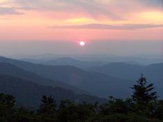 10 Roan Mountain Tn Nc Ideas Appalachian Trail Appalachian Mountains Appalachian