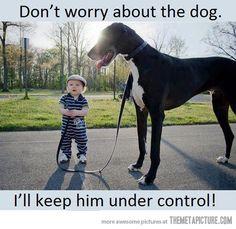 The Dog Whisperer…