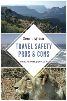 Pros and Cons about travel in South Africa. Why everyone should still visit the rainbow nation #travel #safety #rainbownation #traveltips #safetytips #internationaltravel #africa #southafrica Fox Facts, Visit South Africa, Beautiful Places To Travel, Africa Travel, What You Can Do, Amazing Destinations, Travel Advice, Vip, Travel Inspiration