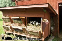 """Raising rabbits By Linda Gabris  -    """"If you take pride and pleasure in growing your own organic garden foods and raising your own chemical-free meats, then consider rabbits."""" -Linda Gabris  Everything you wanted to know about rabbits is here. Housing your rabbits, Feeding your rabbits, Breeding, Raising healthy rabbits, Butchering, and even Recipes."""