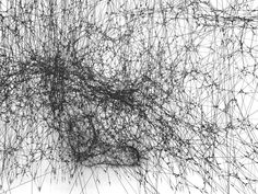 14 Billion / galaxy forming along filaments, like droplets along the strands of a spider's web / tomas saraceno Ink Pen Drawings, Venice Biennale, Exhibition Display, Ex Machina, Unusual Art, Inspiration Wall, Art Model, Texture Art, Art Photography
