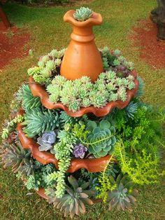Succulents in a pottery birdbath