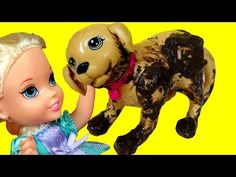 Cute PUPPY ! Elsa & Anna toddlers adopt a Pet - Dog PEES on toddler ELSA's Legs! Pet Store adventure - YouTube