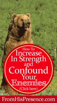 How To Increase In Strength and Confound Your Enemies by Jamie Rohrbaugh | FromHisPresence.com