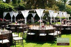 backyard wedding receptions purple wedding and backyard weddings