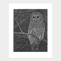 Owl now featured on Fab.