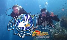 Official 401 package by Adirahayu dive. link http://adirahayudiveresorts.com/category/41167/packages.html