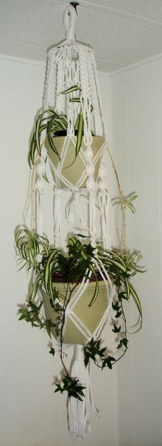 There are lots of plant hangers- from simple to something like this. If you're looking for a craft project, here's one! Macrame Plant Hanger 3 Piece Set White by LillysTreasureChest, $50.00