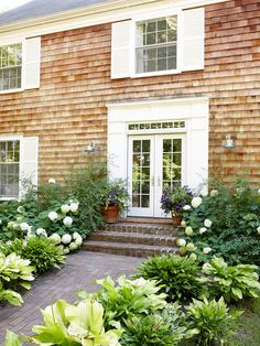 Hostas and Hydrangeas