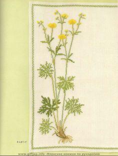 Gallery.ru / Фото #49 - Wild Flowers in Cross-Stitch - Mosca