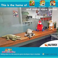 Some of our larger Wild Republic Stuffed Animals are now gracing one of the meeting rooms of Australia's most famous game development company - Halfbrick Studios. Check out all of their games including the popular Fruit Ninja at www.halfbrick.com It's great to see an Aussie company of incredibly creative people mixing it up on the world stage in gaming. #onlinetoys #toys #toystore #toysfortots #plushtoys #plushtoy #stuffedanimal #stuffedanimals #toyshop #Plushies #kidstoys #christmas #gifts