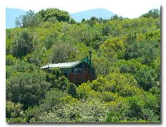 Prizes for 2012 Stanford Birding Photographic Competition  FIRST PRIZE  Teniqua Treetops  2 nights accommodation at Teniqua Treetops in a unique, self-catering tree house.   The resort is situated in pristine Afro-Montane indigenous forest on the Karatara River between Knysna and Sedgefield.   The tree houses can accommodate a maximum of 4 adults or 2 adults and 3 kids.  www.teniquatreetops.co.za  queries@teniquatreetops.co.za  044 356 2868  Value R3460
