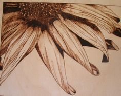 Close up of sunflower wood burned pyrography wall hanging plaque