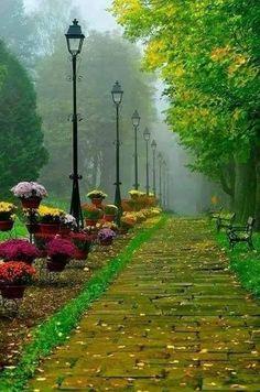 Beautiful images of nature Beautiful Landscapes, Beautiful Gardens, Beautiful Images, Beautiful Park, Simply Beautiful, Nature Images, Nature Photos, Natur Wallpaper, Foto Nature