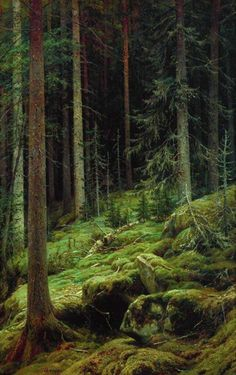 'Thicket' oil painting by Ivan Shishkin, 1881 Tree Forest, Dark Forest, Magical Forest, Landscape Art, Landscape Paintings, Russian Landscape, Wow Art, Walk In The Woods, Norman Rockwell