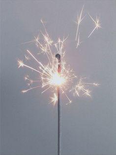 Dandelion sparkler