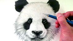 dit is mijn video waar uit ik de panda teken