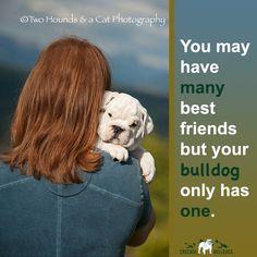 194 best Bulldog Quotes images on Pinterest | Bulldog ...