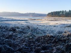 tara gadd @taragadd Frosty start in the St Sever Forest this New Year's Eve @BrittanyFerries #DiscoverWithBF